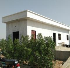AlJadeed43