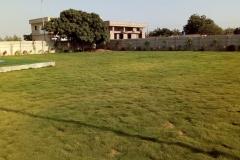AlJadeed36