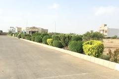 AlJadeed46